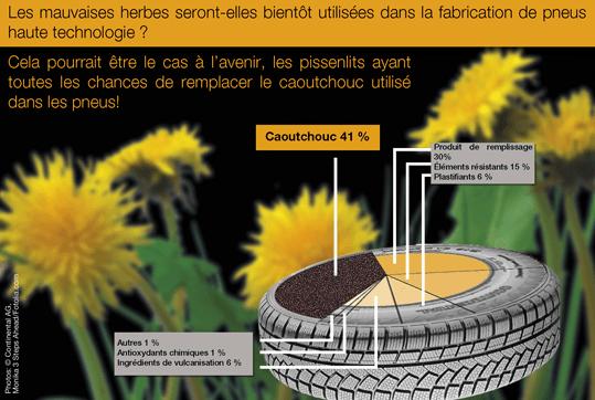 La recette du pneu au pissenlit